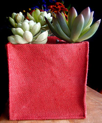 "Red Jute Square Holder - 6"" x 6"" x 6"""