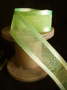 Neon Sheer Ribbon with Satin Wired Edge