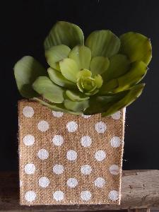 "Jute Square Holder with White Polka Dots - 5"" x 5"" x 5"""